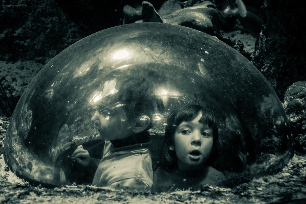 http://fredetsev.eu/galeriesLR/aquarium_vienne_portraits/content/images/large/IMG_8200.jpg