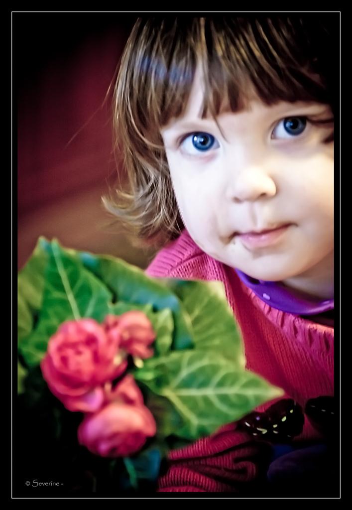 http://fredetsev.eu/imagespourblog/Elizabeth_fleurs_draganmodifie.jpg