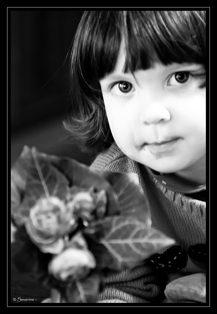 http://fredetsev.eu/imagespourblog/Elizabeth_fleurs_nb.jpg