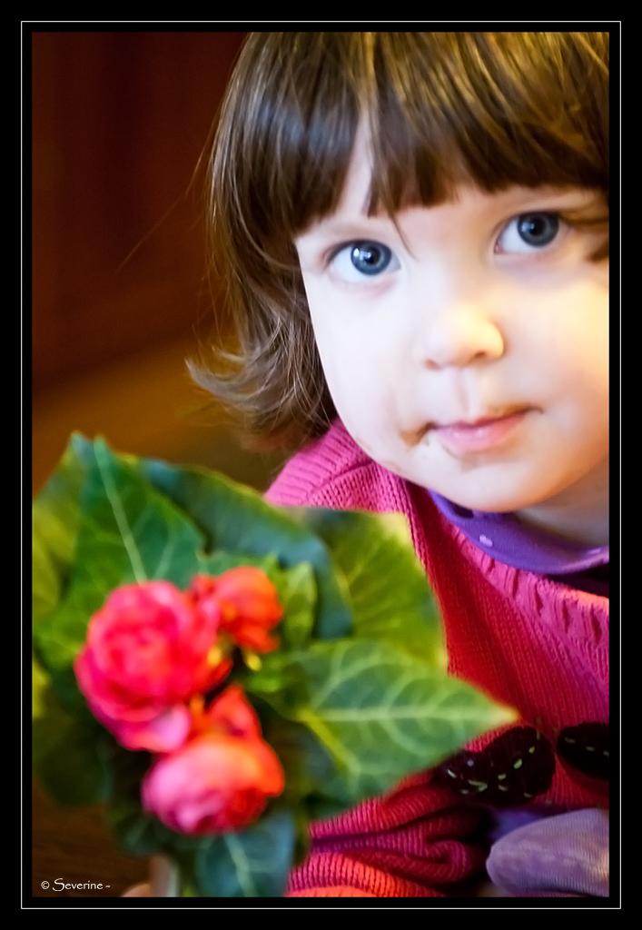 http://fredetsev.eu/imagespourblog/Elizabeth_fleurs_originale.jpg
