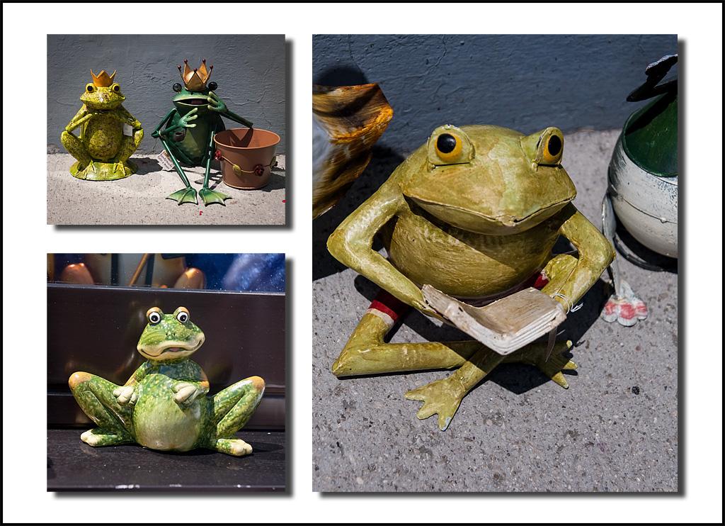 http://fredetsev.eu/imagespourblog/trio_grenouilles_hallstatt.jpg
