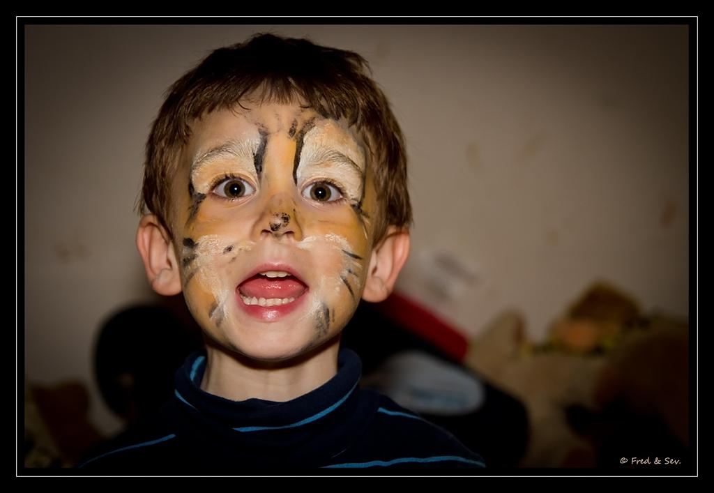 http://fredetsev.eu/photofamille/Arthur_maquillage_tigre_01.jpg