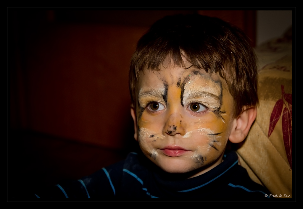 http://fredetsev.eu/photofamille/Arthur_maquillage_tigre_02.jpg