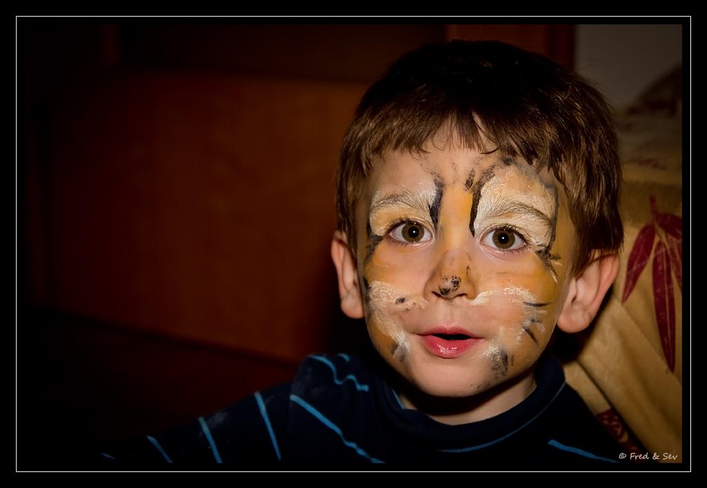 http://fredetsev.eu/photofamille/Arthur_maquillage_tigre_03.jpg